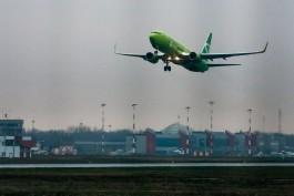 Прямые рейсы из Калининграда в Новосибирск запустят в начале июня