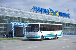 На маршруте № 244Э «Калининград — Аэропорт» увеличивается количество автобусов