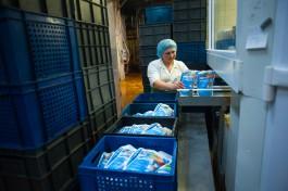Калининградский агрохолдинг планирует поставлять молоко в Крым