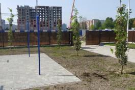В районе улицы Артиллерийской в Калининграде высадили больше ста деревьев и тысячи кустарников