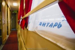 Поезд «Янтарь» опаздывает в Калининград из-за падения крана на ж/д пути в Литве