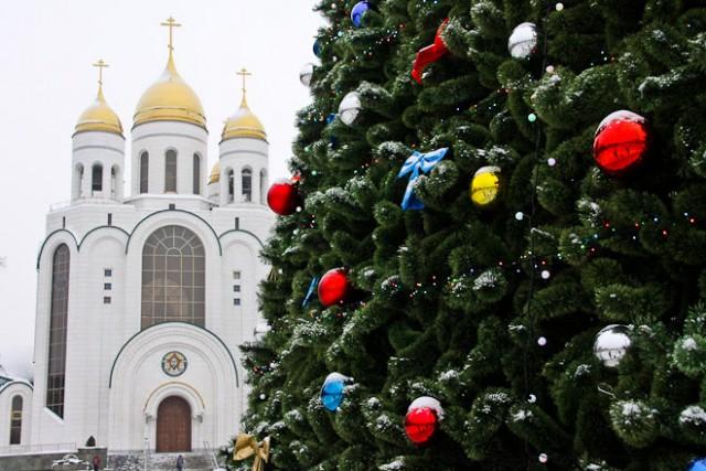 Гражданин Калининграда пытался поджечь главную новогоднюю ёлку города