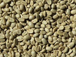 В Калининградскую область не пустили партию зелёного кофе из Латвии