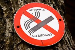 В Калининградской области обнаружили нелегальное производство сигарет