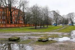 «Велодорожка вместо свинороя»: власти передумали расширять улицу Фрунзе в Калининграде