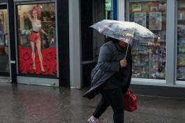 МЧС предупреждает калининградцев об усилении ветра и дожде со снегом