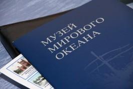 Музей Мирового океана пытается взыскать с бывшего подрядчика корпуса-шара 50 млн рублей