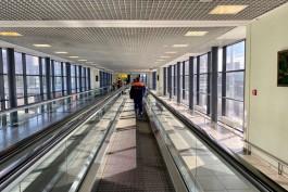 Пассажир рейса Калининград — Москва устроил дебош с полицией и порвал свой паспорт