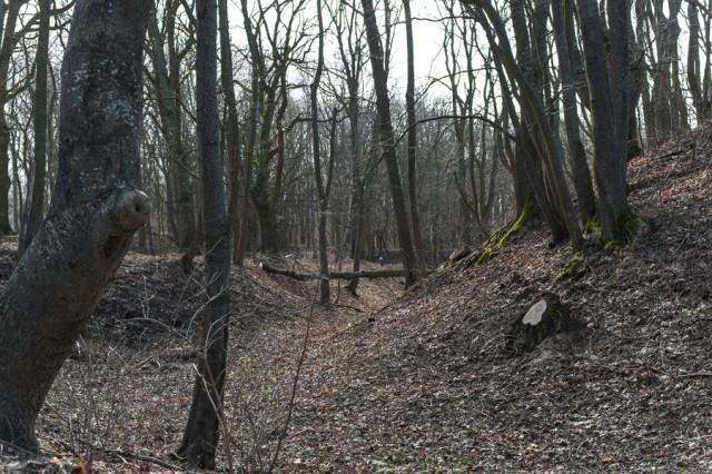 Гражданин Калиниградской области случайно убил знакомую пенсионерку из-за храпа