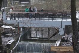 «Линия жизни»: в калининградском зоопарке ремонтируют автодорожный мост