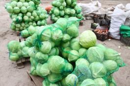 С начала года в Калининградской области сильнее всего подорожали капуста и картофель
