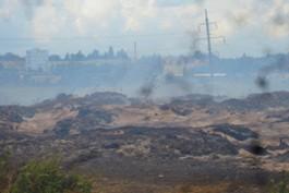 Минприроды оштрафовало владельца горящего короотвала в Калининграде