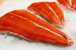 В Калининградской области хотят выращивать лососёвые породы рыб