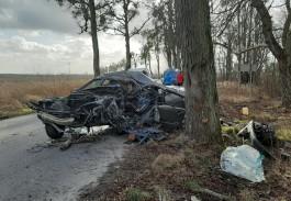 Очевидцы: В Гурьевском округе «Ауди» влетела в дерево, водитель погиб