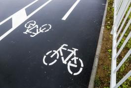 В Калининграде представили пять перспективных велосипедных маршрутов