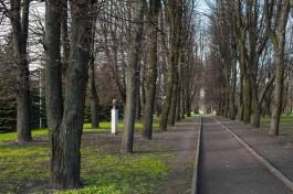 Синоптики обещают в Калининградской области переменчивую погоду на рабочей неделе