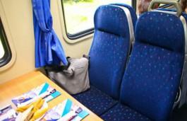 «Общероссийское объединение пассажиров» попросит Минтранс запустить скоростные поезда из Калининграда
