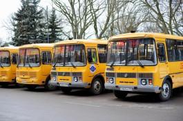 Правительство области закупило 31 автобус для перевозки детей в муниципалитетах