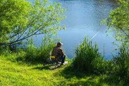 На берегу Преголи в Калининграде нашли труп рыбака