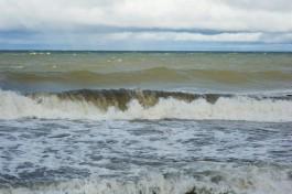 В среду в Калининградской области ожидается усиление ветра до 14 м/с