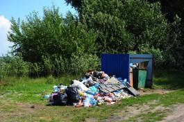 Жители Балтийского района жалуются на огромные горы мусора