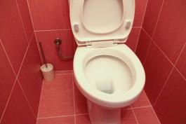 «Калининградгазификация» заказывает пять самоочищающихся сидений для унитаза за полмиллиона рублей