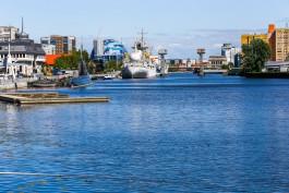 Синоптики прогнозируют в Калининградской области тёплые выходные без осадков