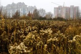 На участке для обманутых дольщиков в Калининграде разрешили построить первый дом