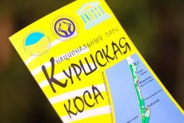 Число посетителей Куршской косы в 2016 году увеличилось на 25%