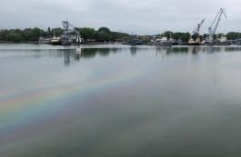 В Балтийске в акватории залива обнаружили нефтяное пятно