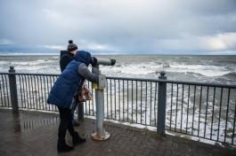 В среду в Калининградской области ожидается усиление ветра до 17 м/с