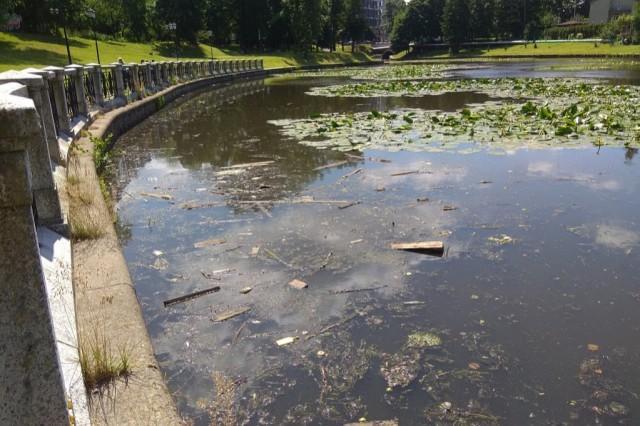 Мэрия: Влияние домов на берегу Верхнего озера на его загрязнение сильно преувеличено