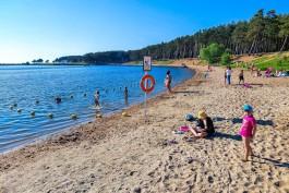 Синоптики обещают жару в Калининградской области в конце рабочей недели