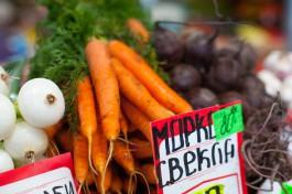 К 2018 году регион будет обеспечивать себя овощами и фруктами меньше чем на 60%
