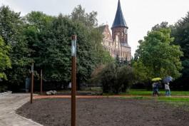 В выходные в Калининградской области ожидается тёплая и облачная погода