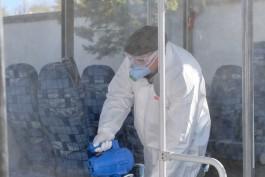 Калининградские перевозчики борются с коронавирусом при помощи «холодного тумана»