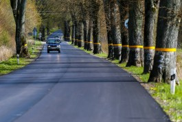 Из-за жары дороги Калининградской области планируют посыпать щебнем