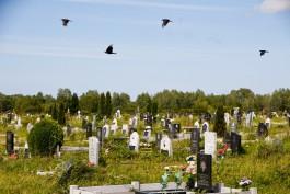 Жительница Зеленоградска подала в суд на ритуальную службу из-за исчезнувшей могилы брата