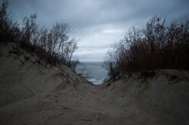 На берегу моря в Отрадном нашли тело студента-археолога из Омска