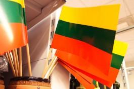 Литовцы выступают за создание армии Евросоюза