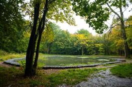 Польские СМИ: Калининград и Эльблонг рискуют остаться без денег Евросоюза на модернизацию парков