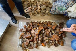 У жительницы области изъяли более 30 кг незаконно добытого янтаря на 3,8 млн рублей